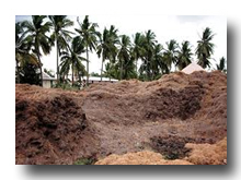 Coir Pith Blocks in india